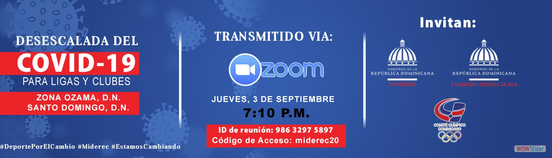 Desescalada COVID19-11    por zoom